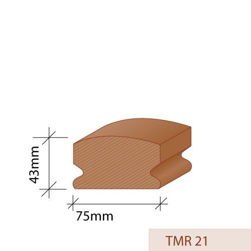 TMR 21
