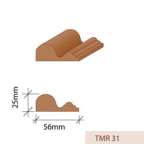 TMR 31